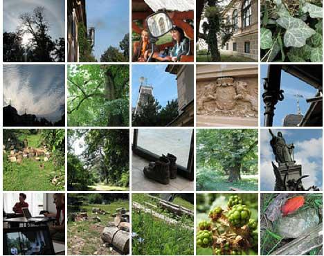 """Școala de vară """"Informatica la Castel"""" (Arad, 29 august—03 septembrie 2011)"""